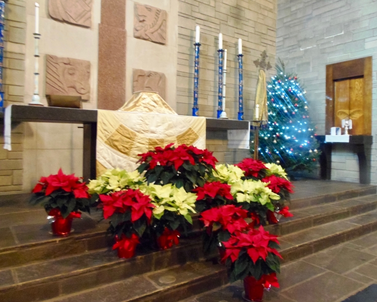 immanuel lutheran chicago.org christmas sanctuary 4